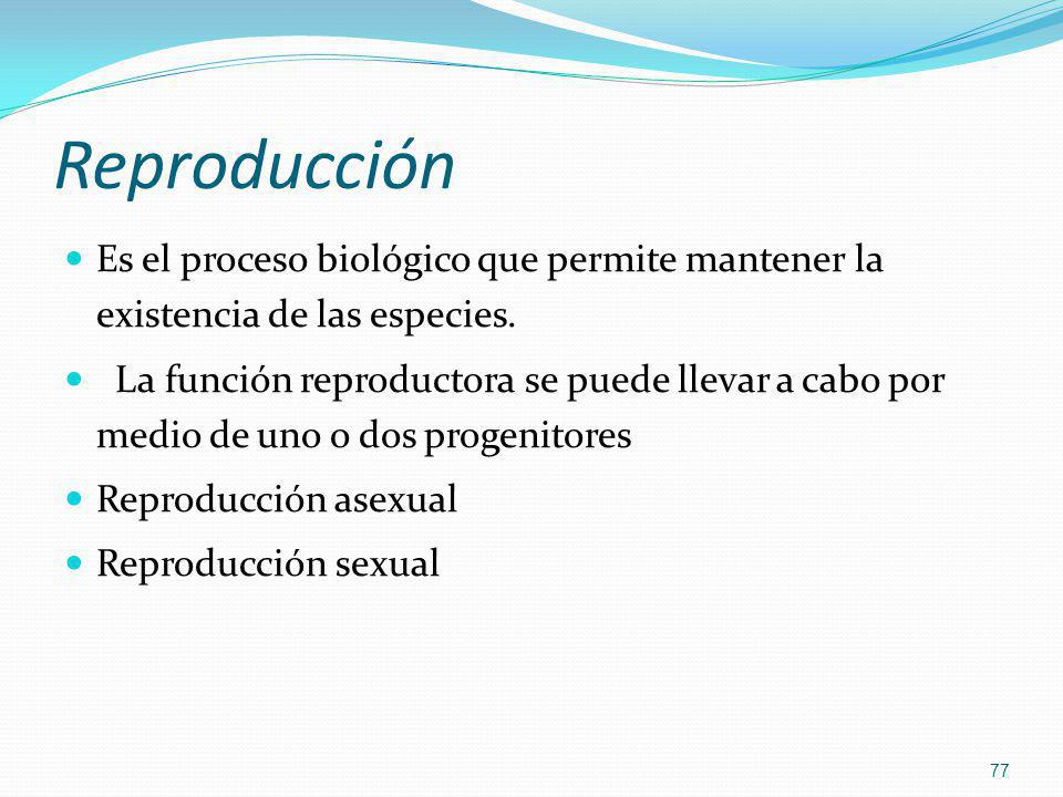 Reproducción Es el proceso biológico que permite mantener la existencia de las especies. La función reproductora se puede llevar a cabo por medio de u