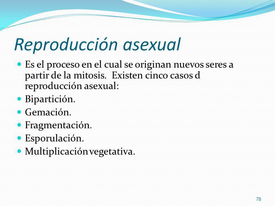 Reproducción asexual Es el proceso en el cual se originan nuevos seres a partir de la mitosis. Existen cinco casos d reproducción asexual: Bipartición