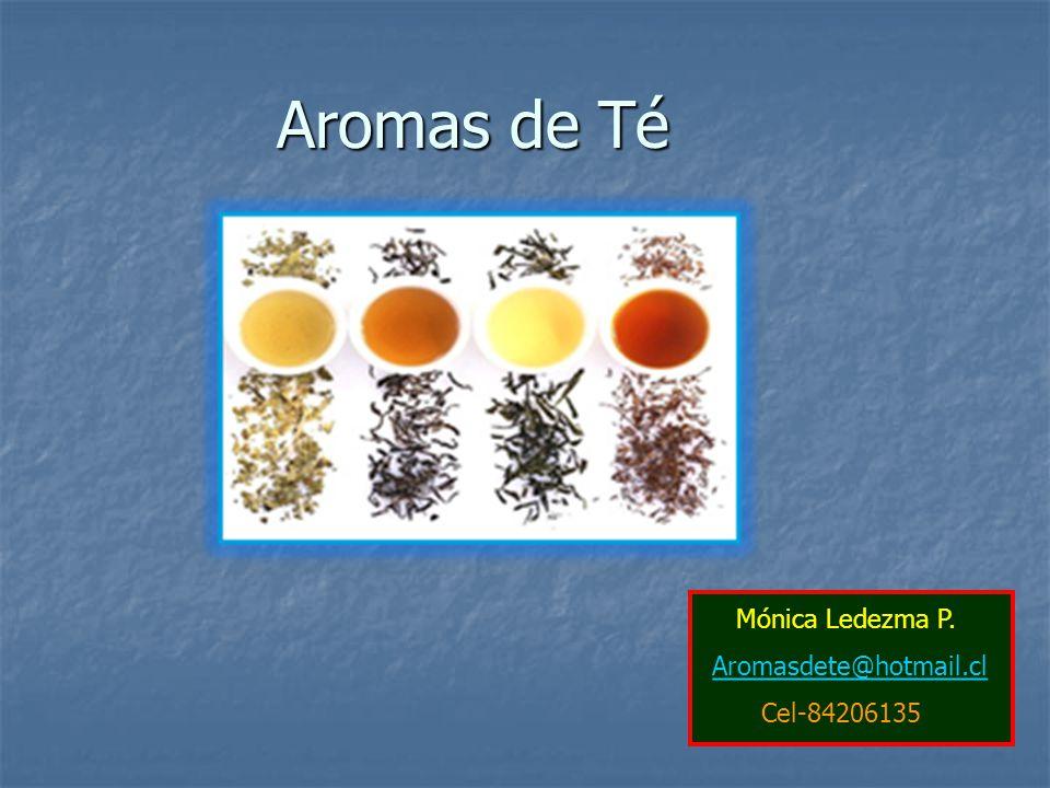Aromas de Té Mónica Ledezma P. Aromasdete@hotmail.cl Cel-84206135