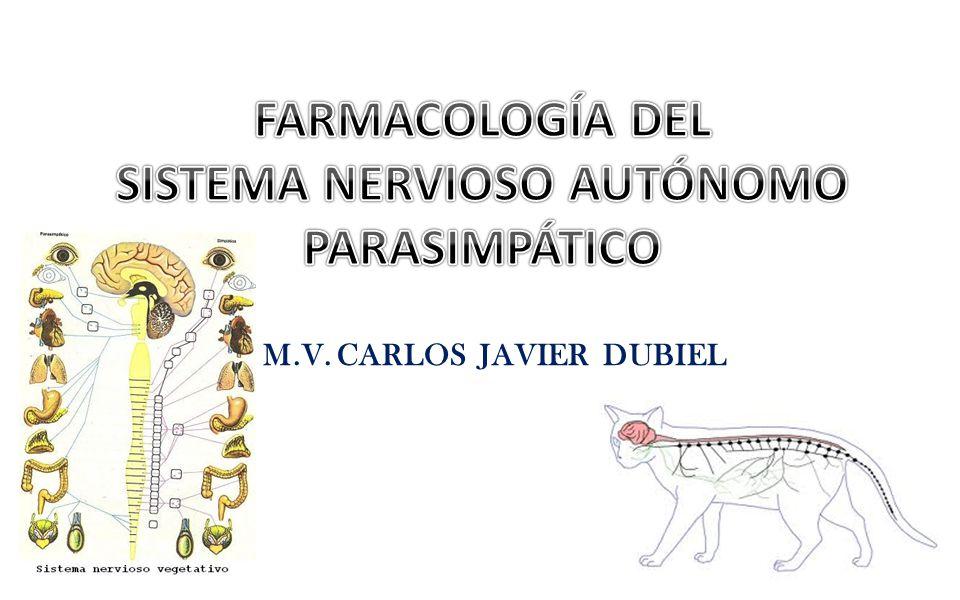 M.V. CARLOS JAVIER DUBIEL
