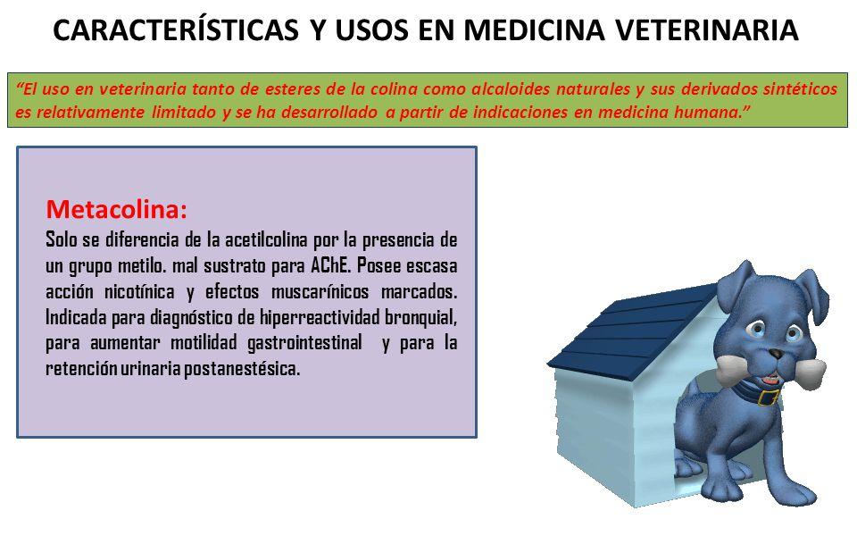 CARACTERÍSTICAS Y USOS EN MEDICINA VETERINARIA El uso en veterinaria tanto de esteres de la colina como alcaloides naturales y sus derivados sintético