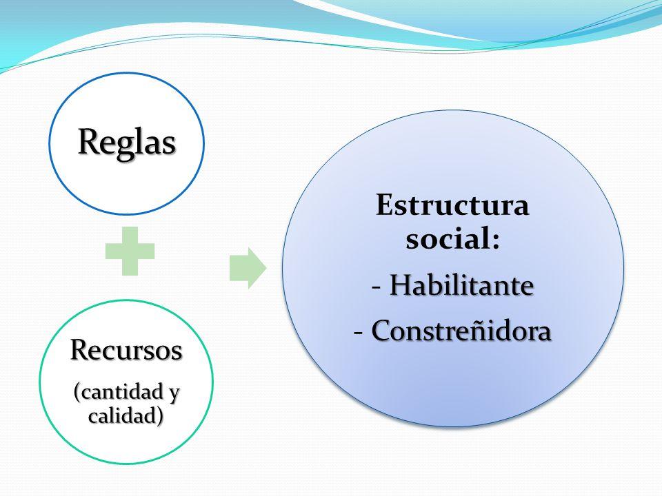 Reglas Recursos (cantidad y calidad) Estructura social: Habilitante - Habilitante Constreñidora - Constreñidora