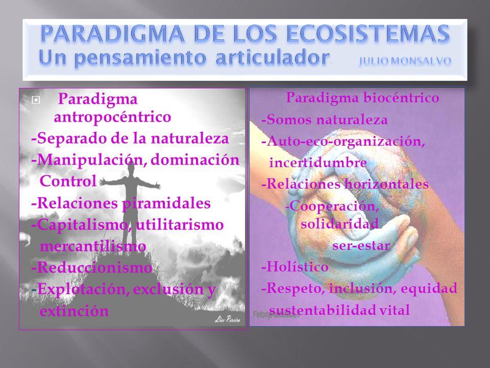 Paradigma biocéntrico -Somos naturaleza -Auto-eco-organización, incertidumbre -Relaciones horizontales - Cooperación, solidaridad ser-estar -Holístico