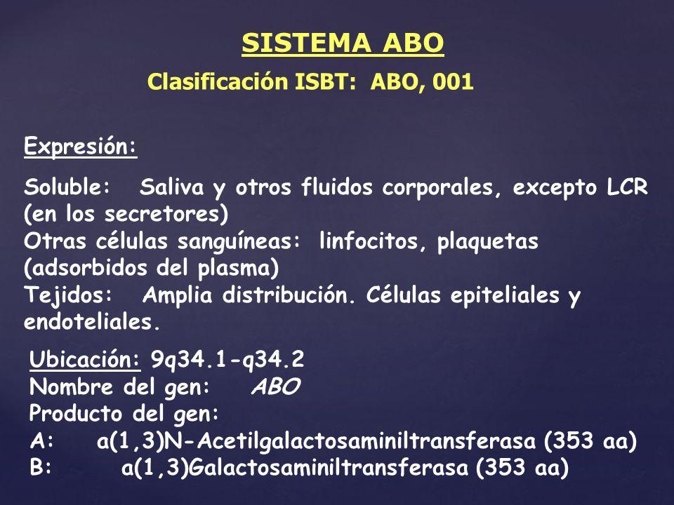 Clasificación ISBT: ABO, 001 Expresión: Soluble: Saliva y otros fluidos corporales, excepto LCR (en los secretores) Otras células sanguíneas: linfocit