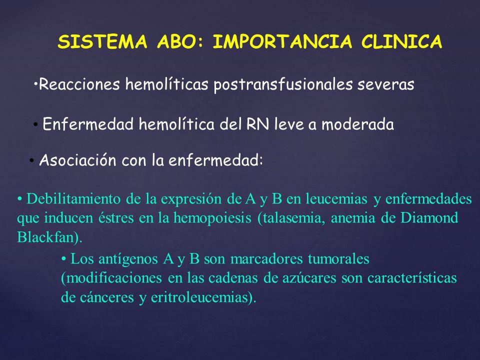 SISTEMA ABO: IMPORTANCIA CLINICA Reacciones hemolíticas postransfusionales severas Enfermedad hemolítica del RN leve a moderada Asociación con la enfe
