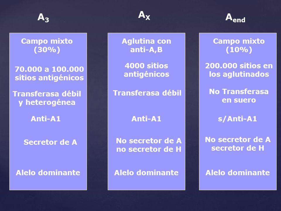 A3A3 AXAX A end Campo mixto (30%) Campo mixto (10%) Aglutina con anti-A,B 70.000 a 100.000 sitios antigénicos 4000 sitios antigénicos 200.000 sitios e