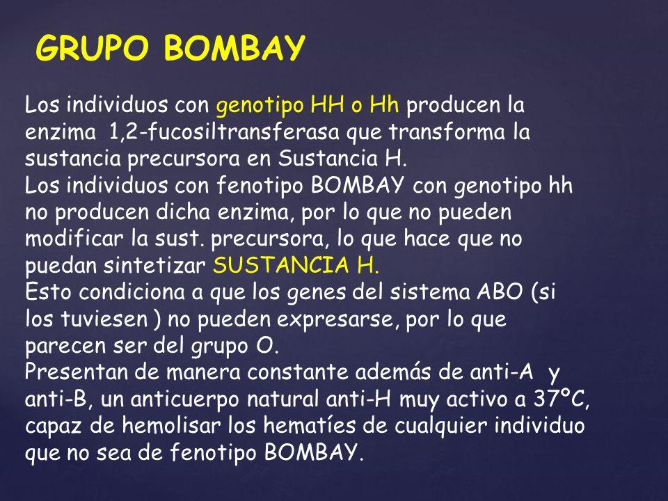 Los individuos con genotipo HH o Hh producen la enzima 1,2-fucosiltransferasa que transforma la sustancia precursora en Sustancia H. Los individuos co