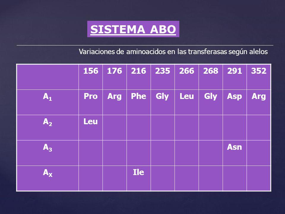 SISTEMA ABO Variaciones de aminoacidos en las transferasas según alelos 156176216235266268291352 A1A1 ProArgPheGlyLeuGlyAspArg A2A2 Leu A3A3 Asn AXAX