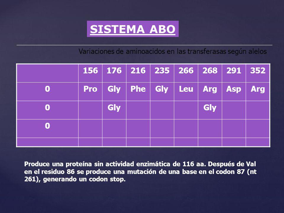 SISTEMA ABO Variaciones de aminoacidos en las transferasas según alelos 156176216235266268291352 0ProGlyPheGlyLeuArgAspArg 0Gly 0 Produce una proteína