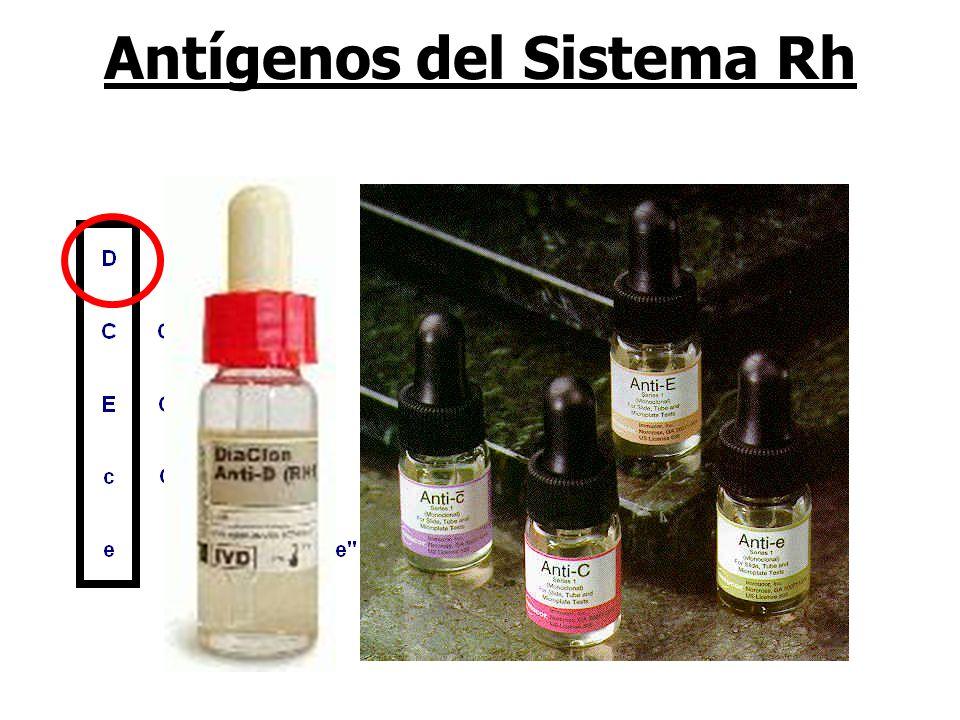Antígenos del Sistema Rh