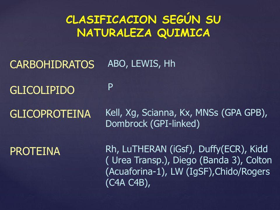 CLASIFICACION SEGÚN SU NATURALEZA QUIMICA CARBOHIDRATOS ABO, LEWIS, Hh GLICOPROTEINA Kell, Xg, Scianna, Kx, MNSs (GPA GPB), Dombrock (GPI-linked) GLIC