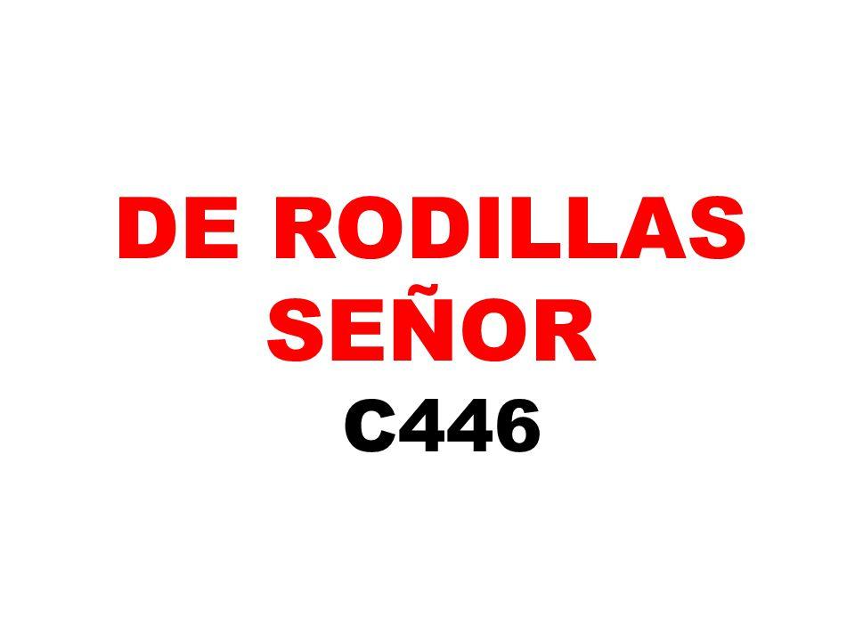 DE RODILLAS SEÑOR C446