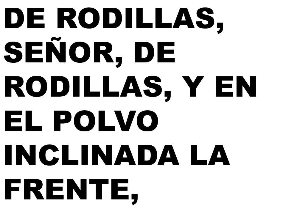 DE RODILLAS, SEÑOR, DE RODILLAS, Y EN EL POLVO INCLINADA LA FRENTE,