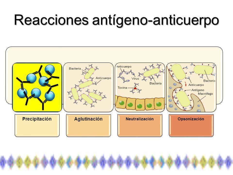 Reacciones antígeno-anticuerpo