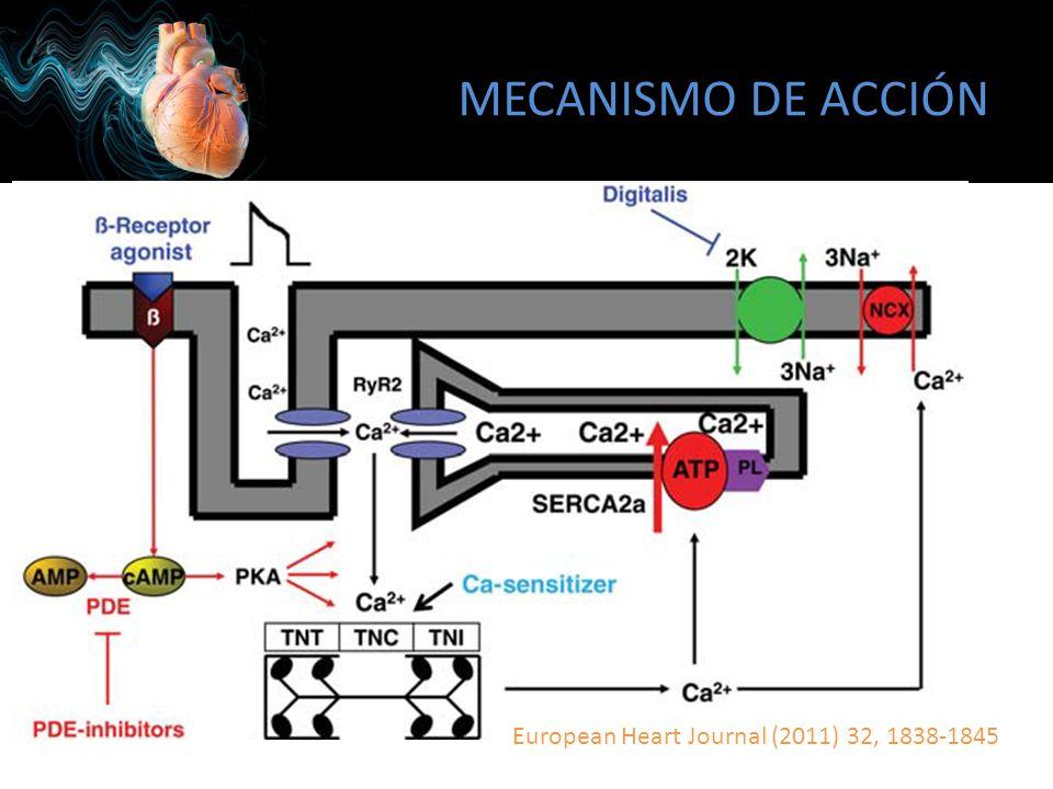 MECANISMO DE ACCIÓN European Heart Journal (2011) 32, 1838-1845