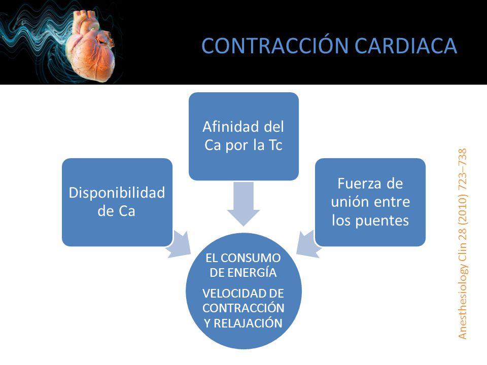 SENSIBILIZADORES DEL CALCIO Aumenta la sensibilidad de la troponina C por el calcio (INOTRÓPICO) – No aumenta el consumo miocárdico de O2 – Sólo durante la sístole Canales de K dependientes de ATP en el músculo liso (VASODILATACIÓN) – Vasculatura pulmonar y coronaria Metabolito activo que ejerce el efecto hasta por 1 semana – Infusión por no más de 24 horas – 48 horas previo a cirugía cardiaca Evidencia IIa, nivel de evidencia B POSTOPERATIVE CARDIAC CARE, Society of Cardiovascular Anesthesiologists, 2011