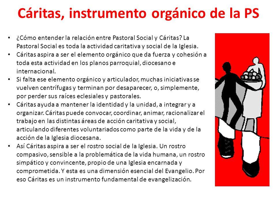 Cáritas, instrumento orgánico de la PS ¿Cómo entender la relación entre Pastoral Social y Cáritas? La Pastoral Social es toda la actividad caritativa