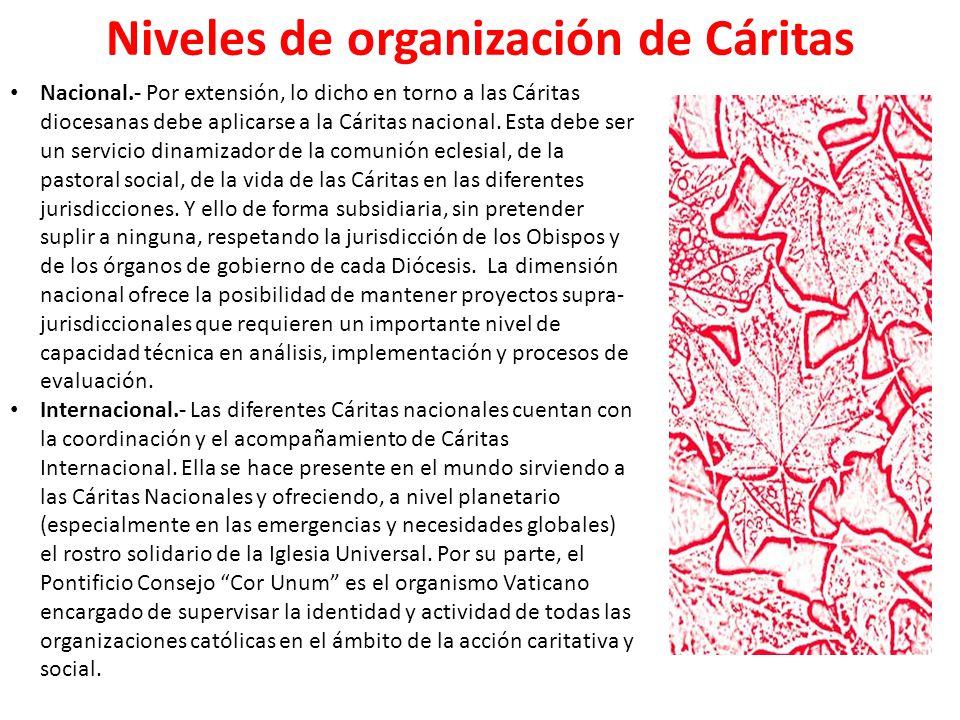 Tareas en el desarrollo en las Cáritas parroquiales La animación de la Comunidad y la creación de la conciencia.