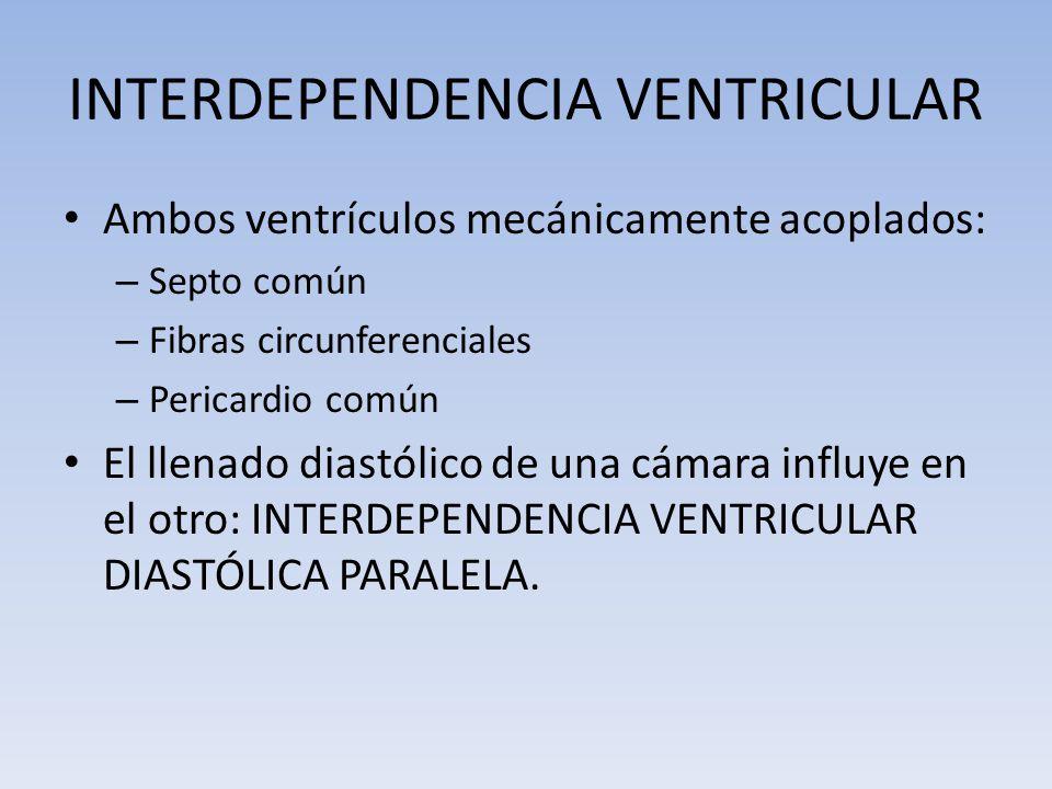 INTERDEPENDENCIA VENTRICULAR Ambos ventrículos mecánicamente acoplados: – Septo común – Fibras circunferenciales – Pericardio común El llenado diastól