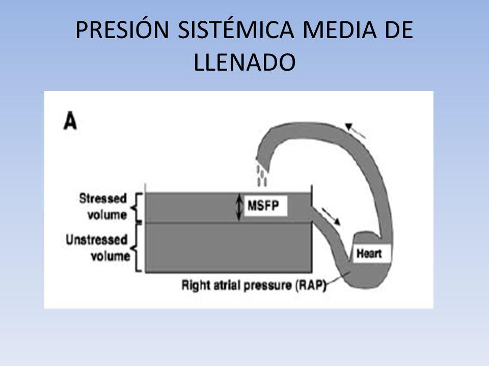 PRESIÓN SISTÉMICA MEDIA DE LLENADO