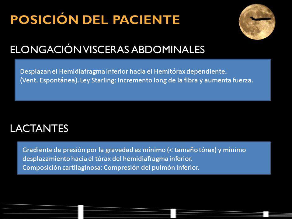ELONGACIÓN VISCERAS ABDOMINALES LACTANTES Desplazan el Hemidiafragma inferior hacia el Hemitórax dependiente.