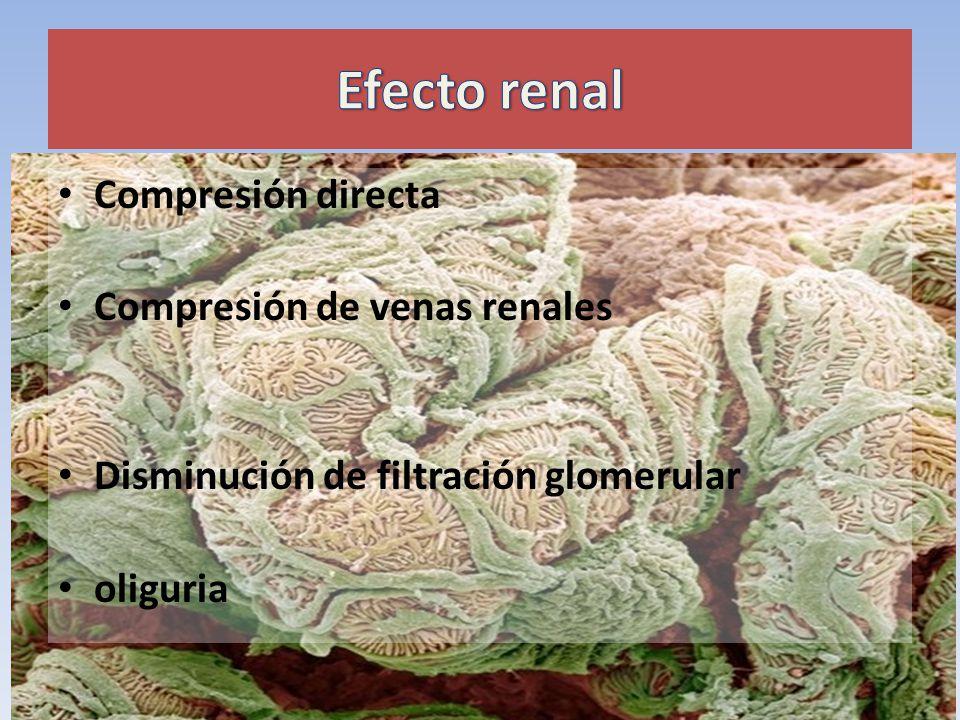 Compresión directa Compresión de venas renales Disminución de filtración glomerular oliguria