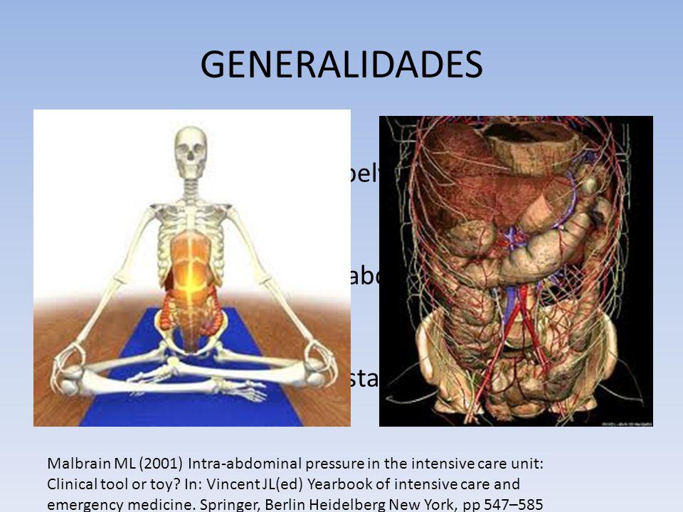 GENERALIDADES Cavidad abdominal Rígida: costilla, vertebras, pelvis Flexible: diafragma, pared abdominal PIA= presión en estado estable en cavidad abd