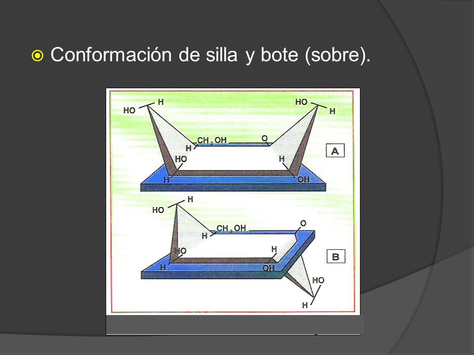 Conformación de silla y bote (sobre).