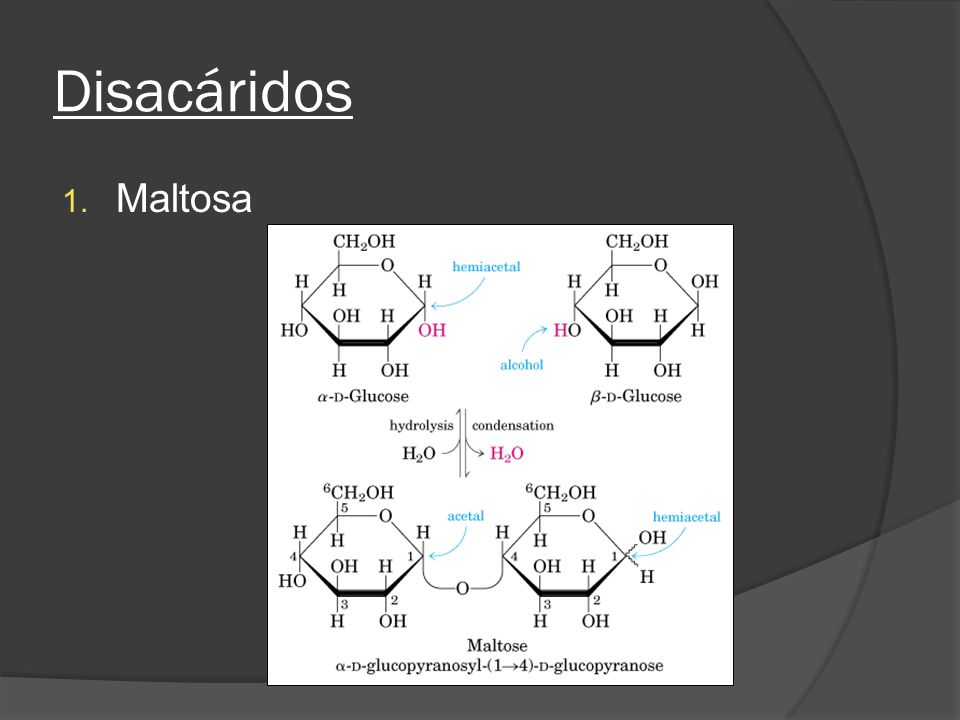 Disacáridos 1. Maltosa
