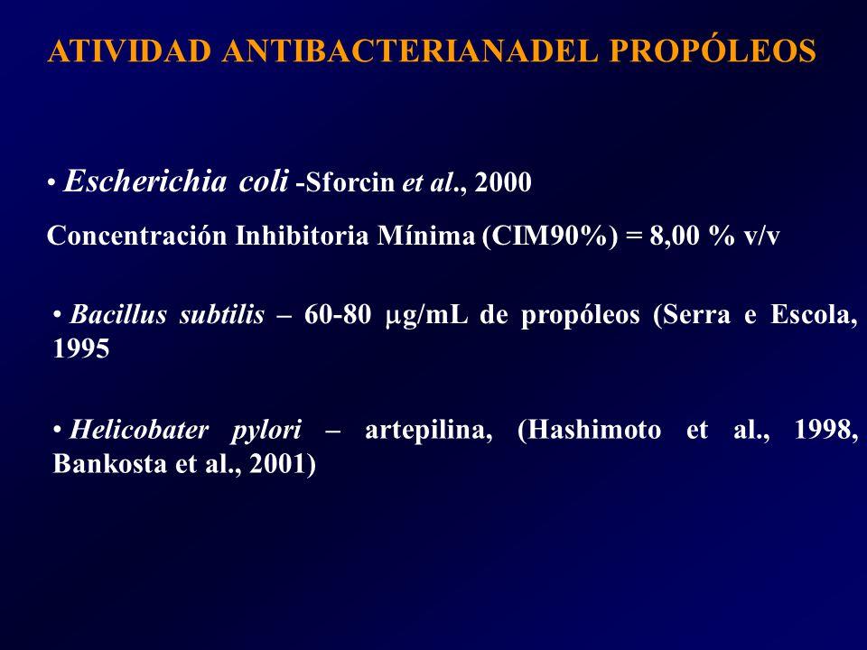ATIVIDAD ANTIBACTERIANADEL PROPÓLEOS Escherichia coli -Sforcin et al., 2000 Concentración Inhibitoria Mínima (CIM90%) = 8,00 % v/v Bacillus subtilis – 60-80 g/mL de propóleos (Serra e Escola, 1995 Helicobater pylori – artepilina, (Hashimoto et al., 1998, Bankosta et al., 2001)