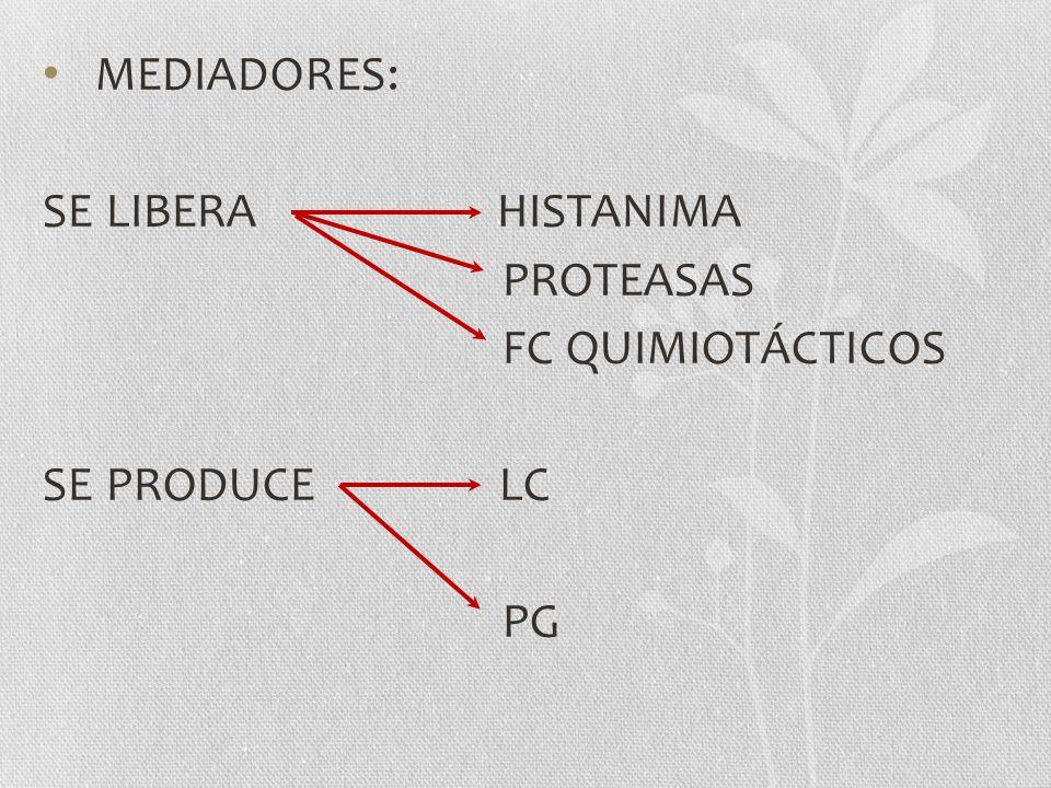 MEDIADORES: SE LIBERA HISTANIMA PROTEASAS FC QUIMIOTÁCTICOS SE PRODUCE LC PG