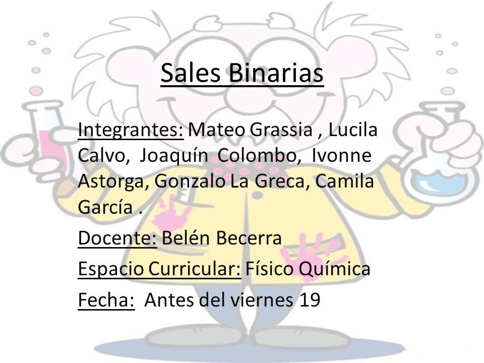 Sales Binarias Integrantes: Mateo Grassia, Lucila Calvo, Joaquín Colombo, Ivonne Astorga, Gonzalo La Greca, Camila García. Docente: Belén Becerra Espa