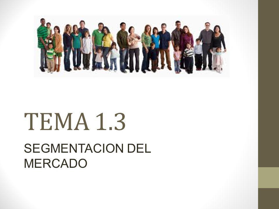 TEMA 1.3 SEGMENTACION DEL MERCADO
