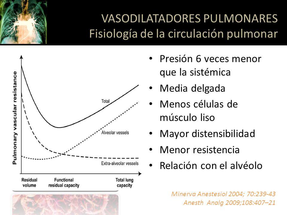 VASODILATACIÓN Oxido nítrico (NO) Prostaciclina (PGI2) Péptido natriurétrico atrial VASOCONSTRICCIÓN Hipoxia Hipercapnia Angiotensina II Endotelina Tromboxano A2 VASODILATADORES PULMONARES Fisiología de la circulación pulmonar Minerva Anestesiol 2004; 70:239-43