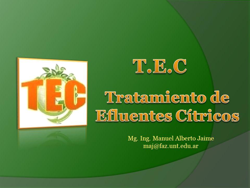 Mg. Ing. Manuel Alberto Jaime maj@faz.unt.edu.ar