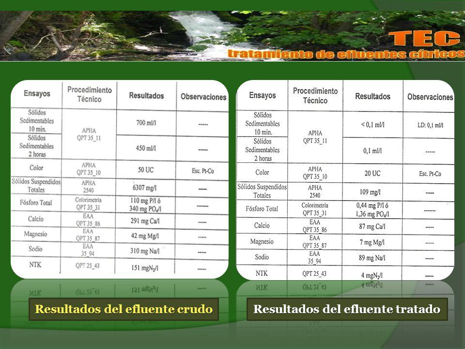 Miércoles 28 de abril de 2010 PESCADORES ACUSAN A CITRÍCOLAS POR LA CONTAMINACIÓN DE EL CADILLAL...la mortandad de peces en El Cadillal es producto de la falta de control en el uso de fertilizantes y agrotóxicos en las zonas cercanas al dique.