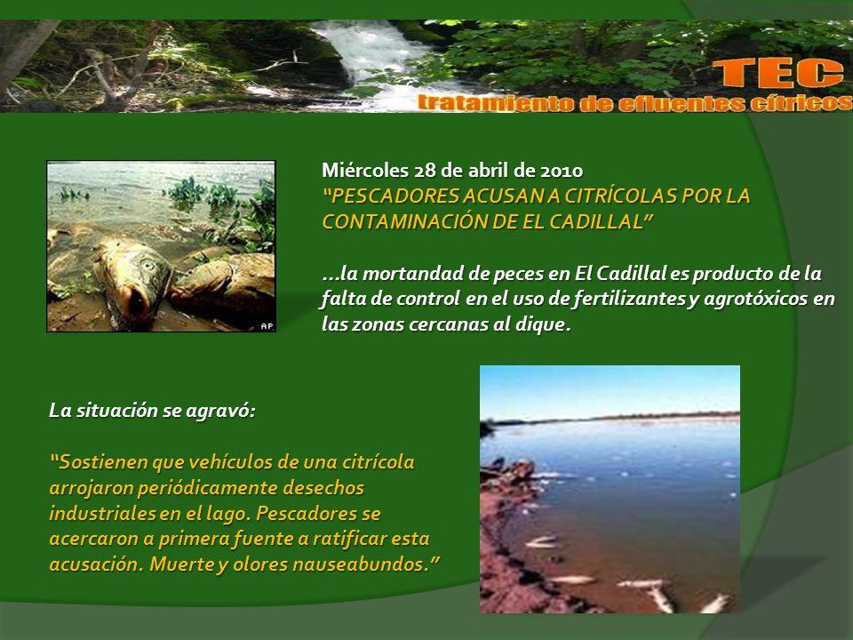 Miércoles 28 de abril de 2010 PESCADORES ACUSAN A CITRÍCOLAS POR LA CONTAMINACIÓN DE EL CADILLAL...la mortandad de peces en El Cadillal es producto de