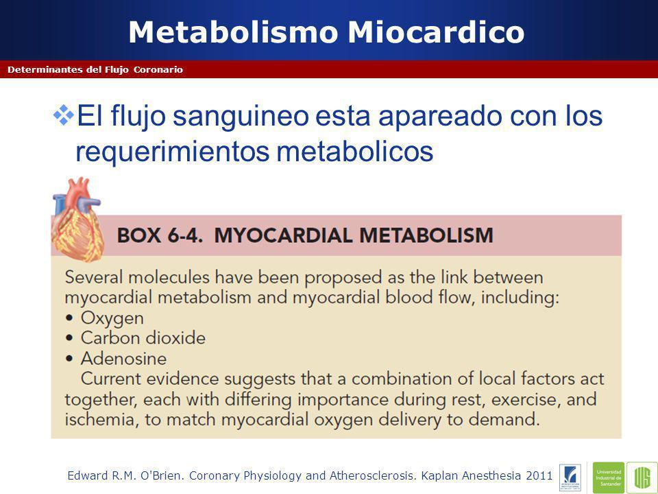 Metabolismo Miocardico Determinantes del Flujo Coronario Edward R.M.