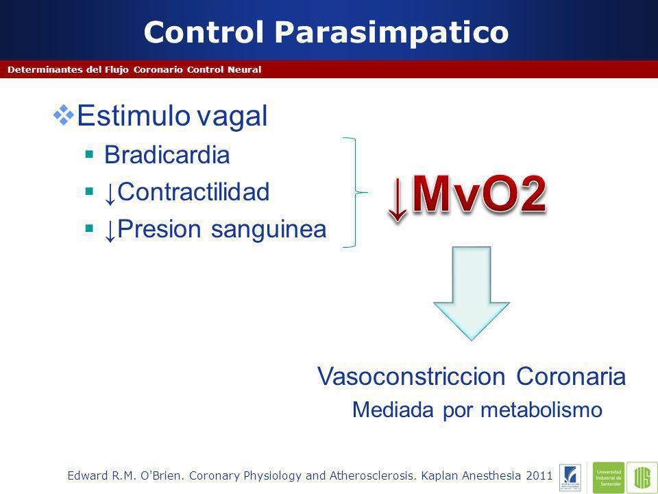 Control Parasimpatico Determinantes del Flujo Coronario Control Neural Edward R.M.