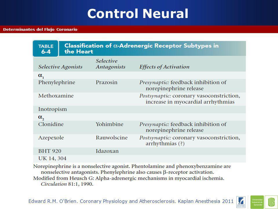 Control Neural Determinantes del Flujo Coronario Edward R.M.