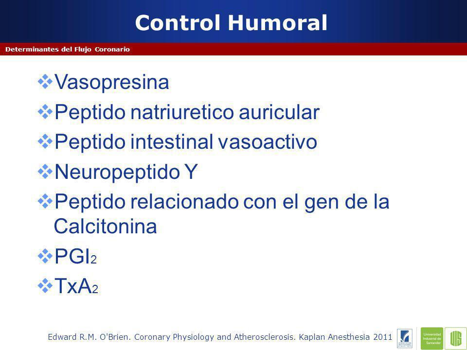 Control Humoral Determinantes del Flujo Coronario Edward R.M.