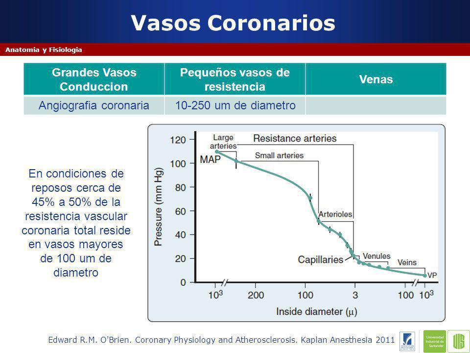 Determinante A/D Flujo Coronario - Estenosis Coronaria Edward R.M.