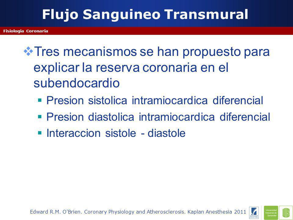 Flujo Sanguineo Transmural Fisiologia Coronaria Edward R.M.