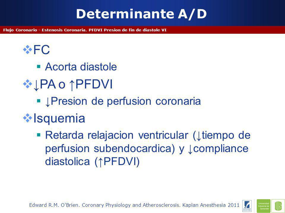 Determinante A/D Flujo Coronario - Estenosis Coronaria.