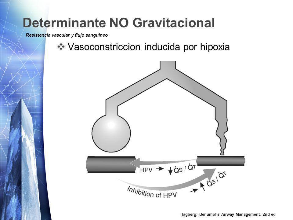 Determinante NO Gravitacional Vasoconstriccion inducida por hipoxia Hagberg: Benumof's Airway Management, 2nd ed Resistencia vascular y flujo sanguine