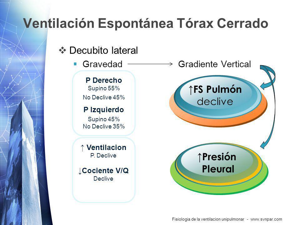 Ventilación Espontánea Tórax Cerrado Decubito lateral GravedadGradiente Vertical Fisiologia de la ventilacion unipulmonar - www.svnpar.com FS Pulmón d