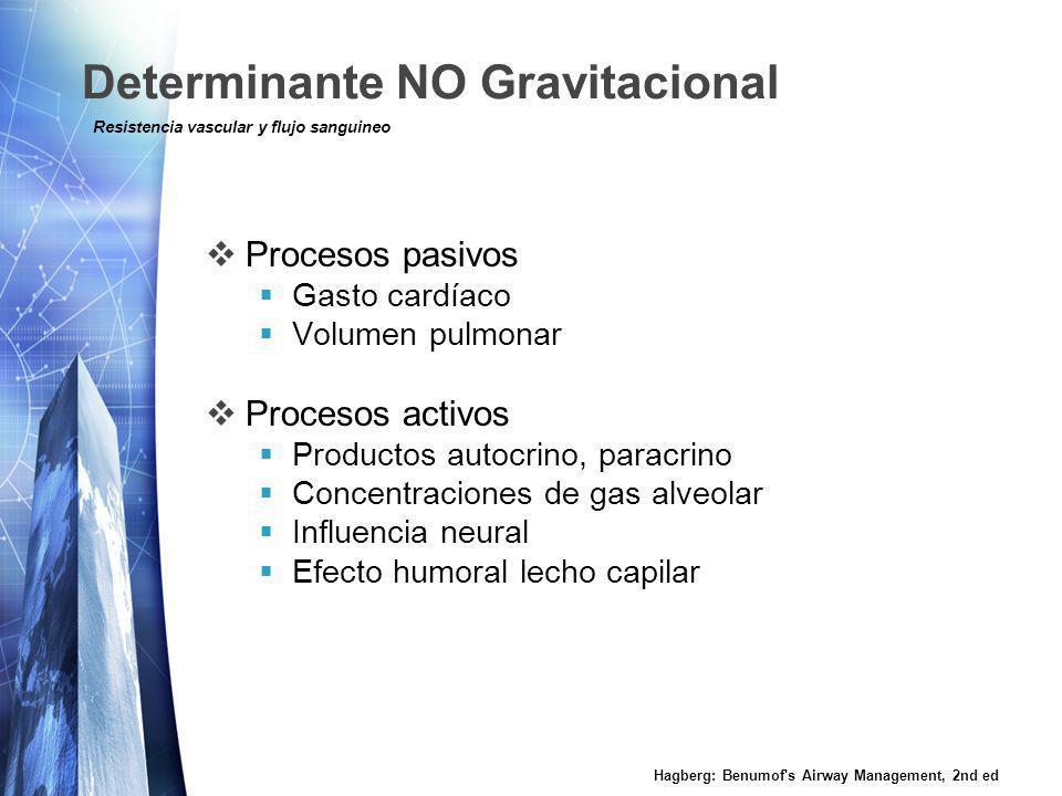 Determinante NO Gravitacional Procesos pasivos Gasto cardíaco Volumen pulmonar Procesos activos Productos autocrino, paracrino Concentraciones de gas