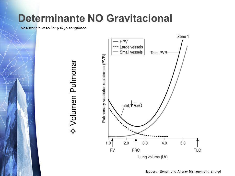 Determinante NO Gravitacional Secrecion Paracrina / Autocrina local Hagberg: Benumof s Airway Management, 2nd ed Resistencia vascular y flujo sanguineo