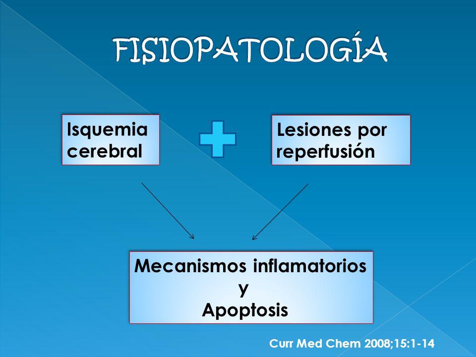 Isquemia cerebral Isquemia cerebral Lesiones por reperfusión Mecanismos inflamatorios y Apoptosis Mecanismos inflamatorios y Apoptosis Curr Med Chem 2