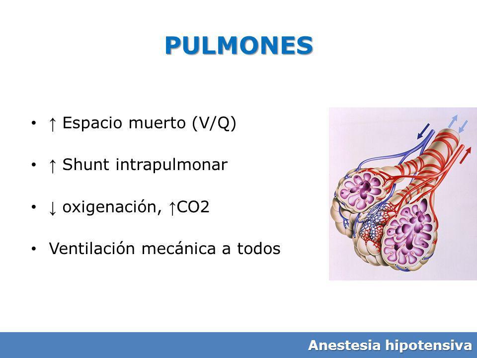 PULMONES Espacio muerto (V/Q) Shunt intrapulmonar oxigenación, CO2 Ventilación mecánica a todos Anestesia hipotensiva